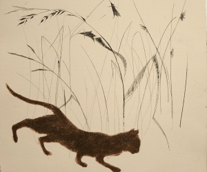 Julie-Wyness-Illustrations-1