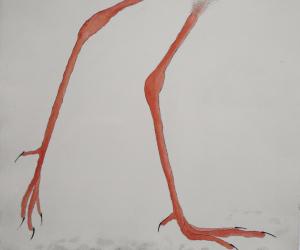 Julie-Wyness-Illustrations-3