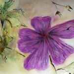 09-Wild-geranium-ink-watercolour-Julie-Wyness