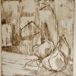 16-Shallots-Julie-Wynes-printmaking-etching