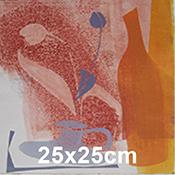 Julie Wyness 25x25cm prints