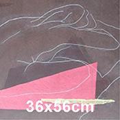 Julie Wyness 36x56cm